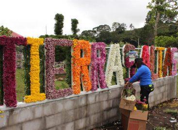 Millones de flores de las tierras altas de Panamá celebran su fiesta anual