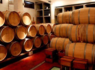 Producción de vino se desploma enAmérica del Sur