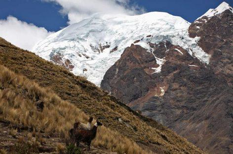 Estudio europeo alerta disminución dramática de glaciares en Bolivia