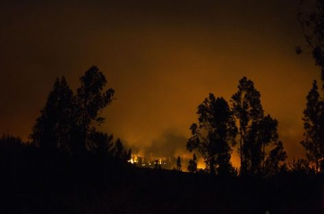 Bachelet canceló viaje a cumbre por incendios que mantienen poder destructivo