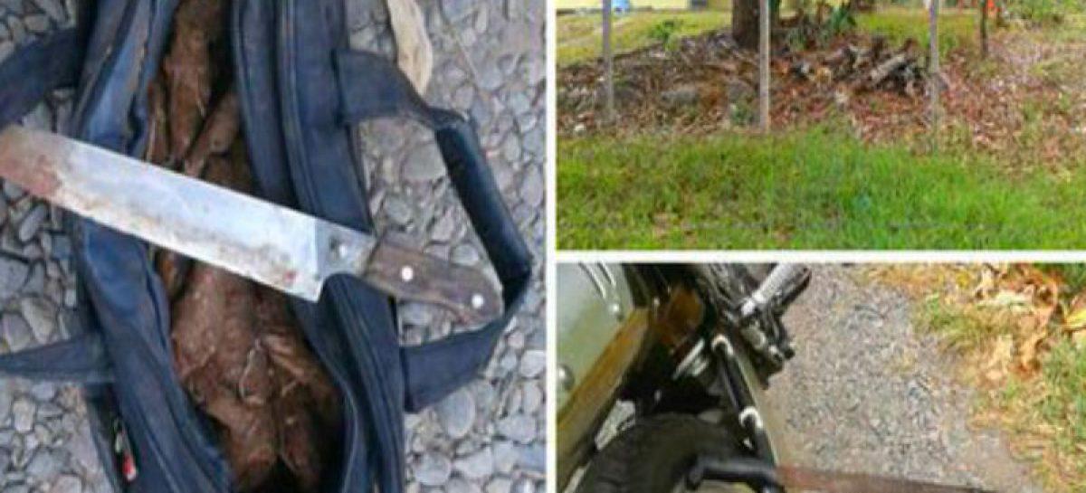 A un ladrón le cayeron a machetazos tras ser sorprendido hurtando otoes