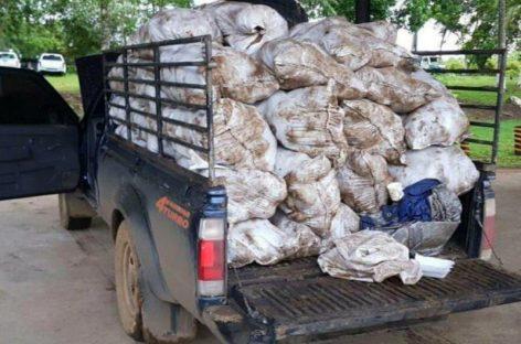 Decomisan 100 paquetes de cocaína ocultos en sacos de ñame