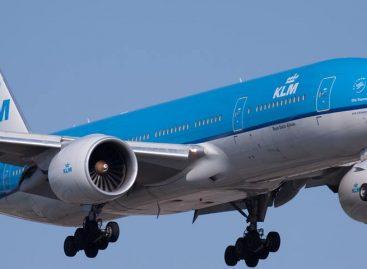 Un perro reclama 470 dólares a KLM por el retraso de un vuelo a Ámsterdam