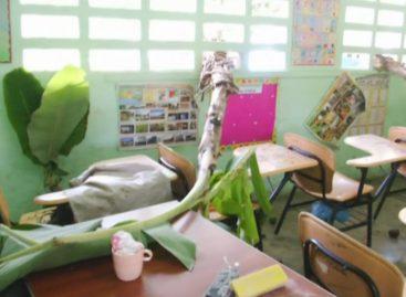 Delincuentes hurtaron y pintaron mensajes obscenos en escuela de Chiriquí