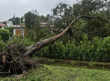 Irma dejó sin electricidad a casi 3,5 millones de clientes en Florida