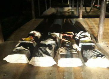 Hallaron 250 paquetes de drogas dentro de un contenedor en Colón