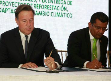 Sancionada la Ley de Incentivos Forestales