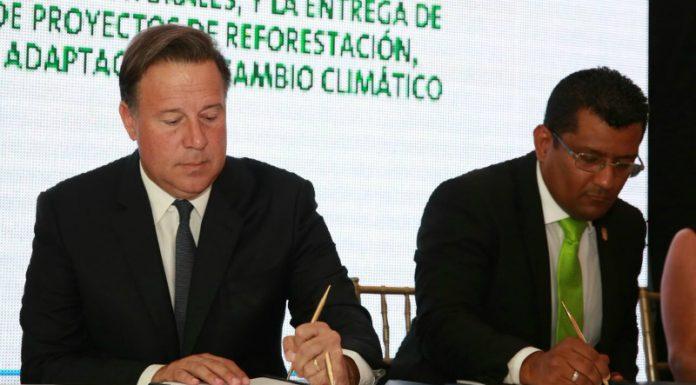 incentivos forestales