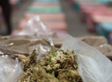 Incautaron en Colombia 245 kilos de cocaína y 90 de marihuana