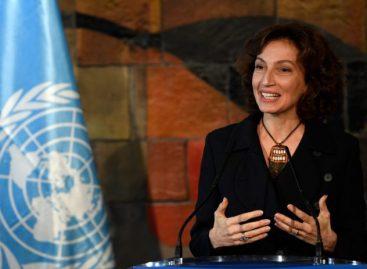 La Unesco condenó el asesinato de una periodista y youtuber mexicana