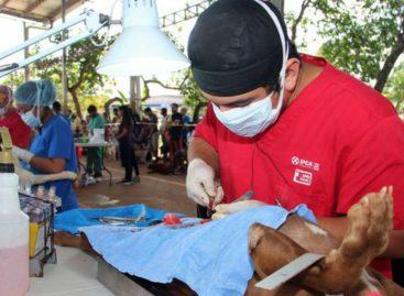 Organizarán una jornada de esterilización el 25 de marzo en Casco Viejo