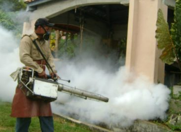 Reportan dos muertes por dengue en Colón