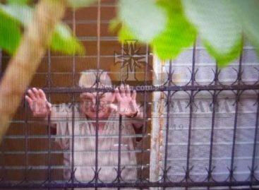 Sistema Penitenciario desmientre que existan restricciones para visitas a Martinelli