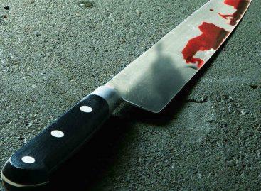 Capturan al antisocial que robó e hirió con arma blanca a dos enfermeras en Marbella