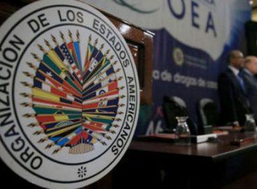 Detalle a detalle: Las inconsistencias que encontró la OEA en las elecciones del 5 de mayo