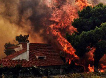 Incendios en la costa de Atenas han dejado 74 muertos