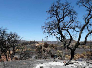 Incendio en el Algarve portugués fue controlado tras una semana