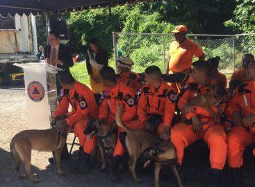 Incorporan seis nuevos cachorros de rescate a unidad canina del Sinaproc