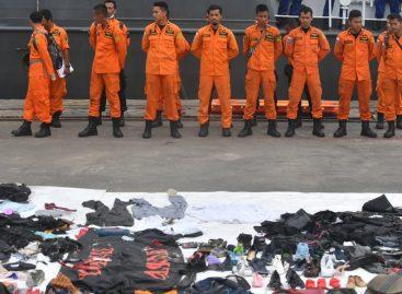 Fueron hallados restos humanos de avión accidentado en Indonesia