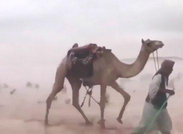 Fin de mundo: El desierto de Arabia Saudita convertido en un mar por inusuales lluvias (+Videos)