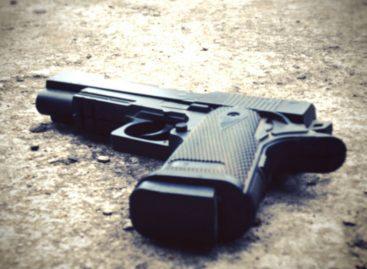 Extendieron veda a importación de armas de fuego