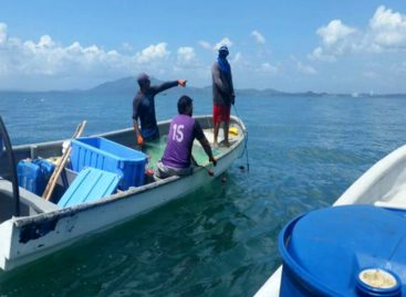 Admiten a Panamá en ente que vigila pesca en el Atlántico Norte