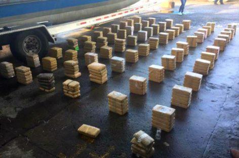 En diez días las autoridades han decomisado más de una tonelada de droga