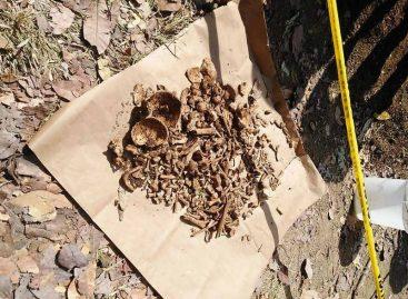 Investigan hallazgo de restos óseos en Los Santos