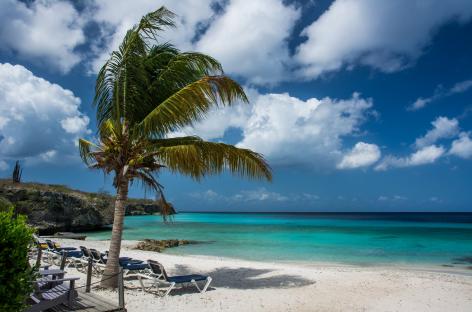 Imperdibles atracciones que no debes dejar de visitar en el Parque Playa del Carmen