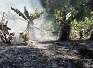 Incendios en Sierra Nevada de Colombia afectaron a 70 familias indígenas