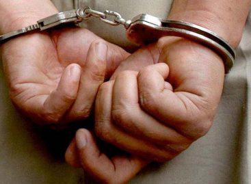 Nuevo grupo Alfa de la PN se atribuye 117 capturas en un día