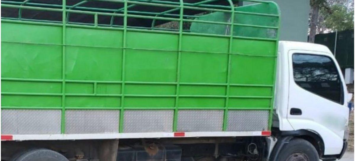 Detuvieron a seis migrantes cubanos y uno ecuatoriano que viajaban ocultos en un camión                                                    fg