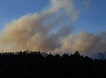 Desalojados dos mil habitantes por incendio forestal en el oriente de México