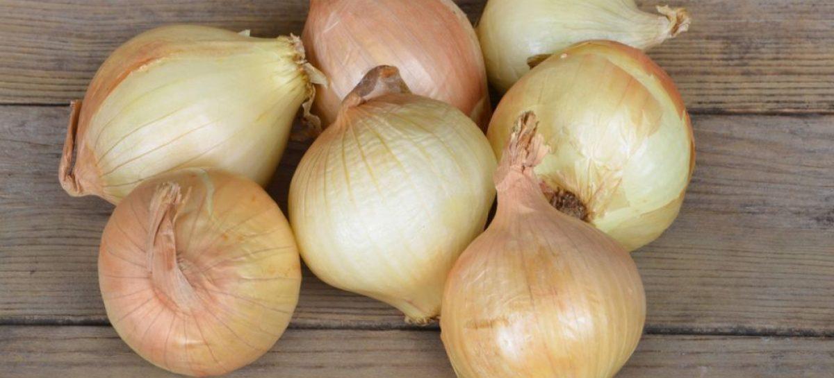 MIDA planea importar un lote de cebollas por desabastecimiento