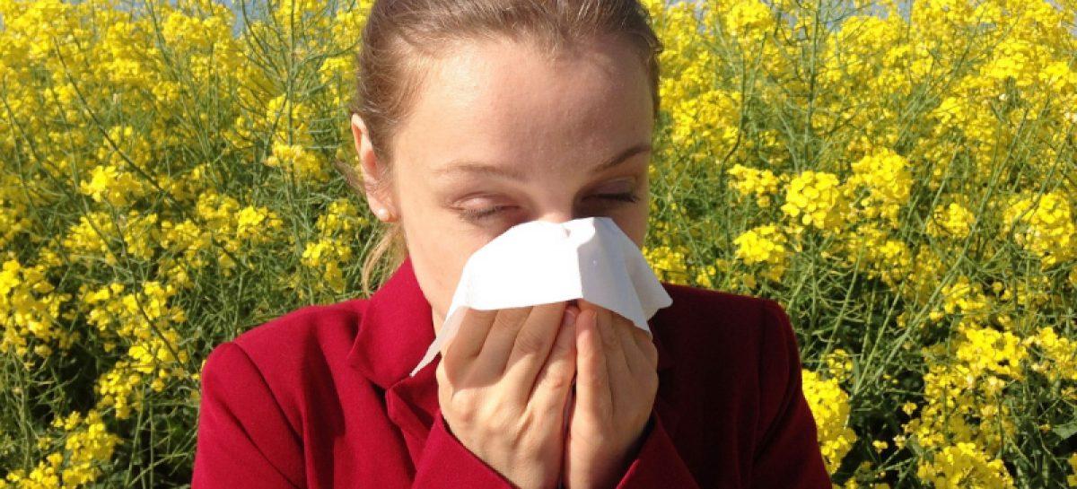 ¿Sufres de alergia? ¿Sabías que te pueden causar problemas mentales?