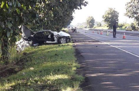 Reportan 155 muertes por accidentes de tránsito durante 2019