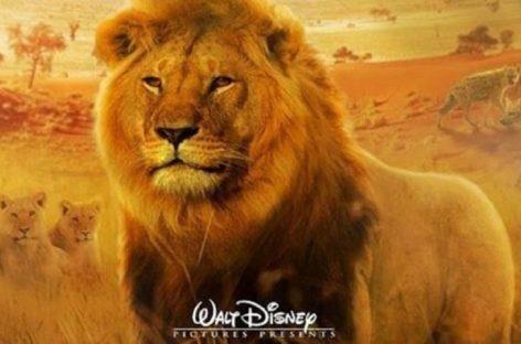 Beyoncé y Donald Glover triunfan en el estreno mundial de «The Lion King»