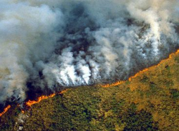 #PrayforAmazonas La tendencia que es un grito de alerta por los incendios forestales en el pulmón del planeta (+Videos)