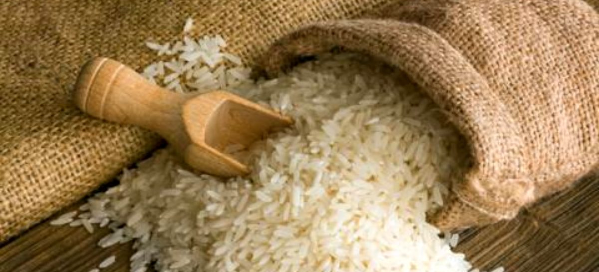 MIDA aclara que no habrá importación de arroz