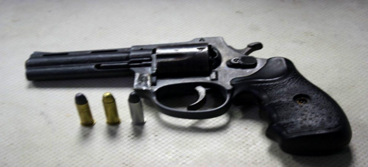 Ministerio de Seguridad extiende decreto de suspensión a la importación de armas de fuego