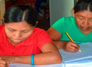 Unas 76 mil personas han sido alfabetizadas en el país en la última década