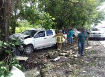 Un conductor se estrelló contra puesto de legumbres en Chiriquí