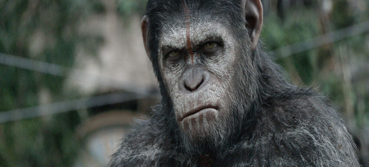 Disney trabaja en una nueva cinta de la saga «The Planet of the Apes»