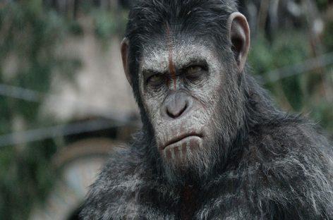 Disney trabaja en una nueva cinta de la saga «The Planet of the Apes»