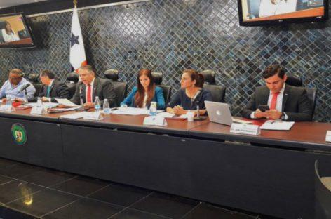 El martes 11 iniciará debate del reglamento interno de la AN
